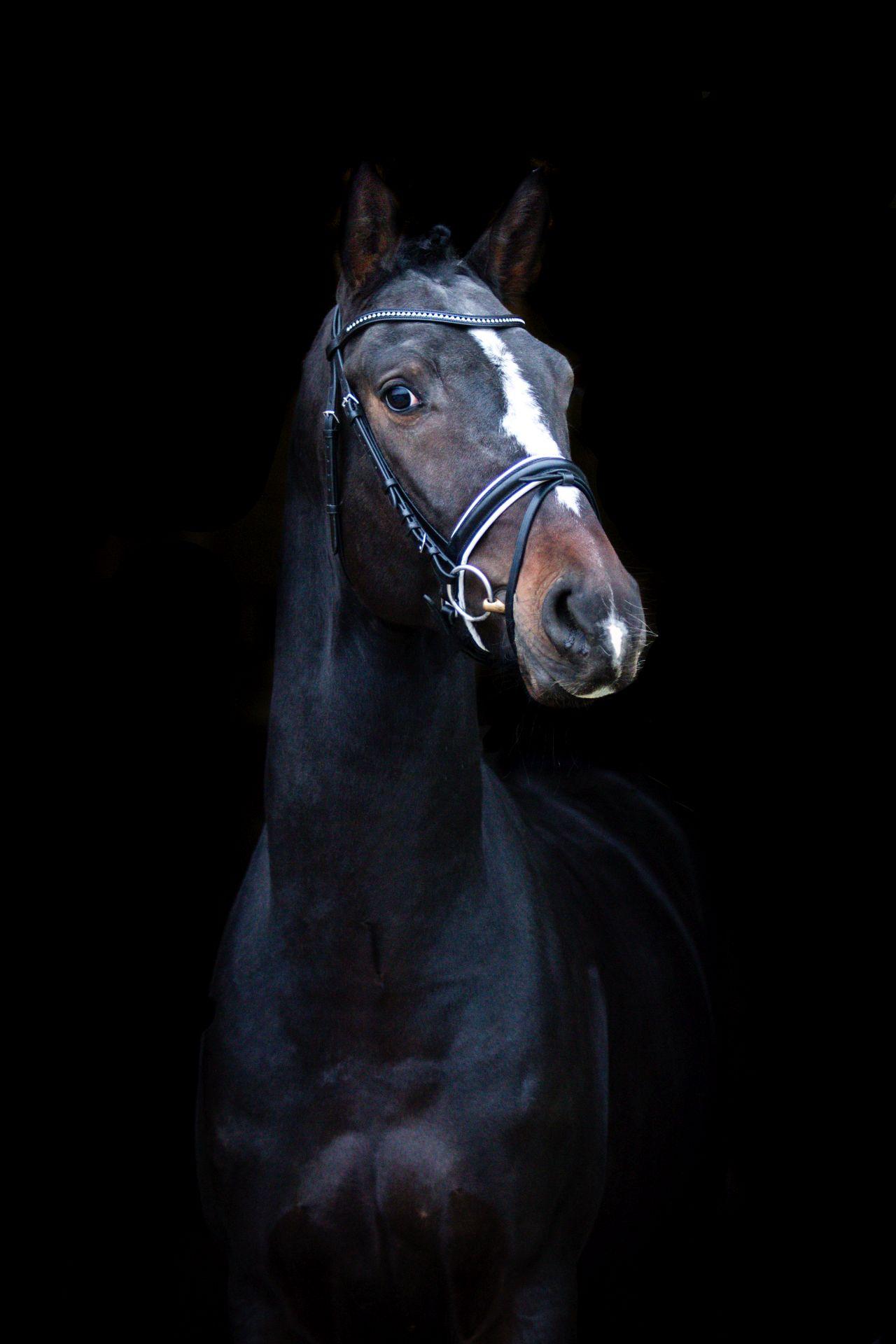diamond-dream-profil-czarne